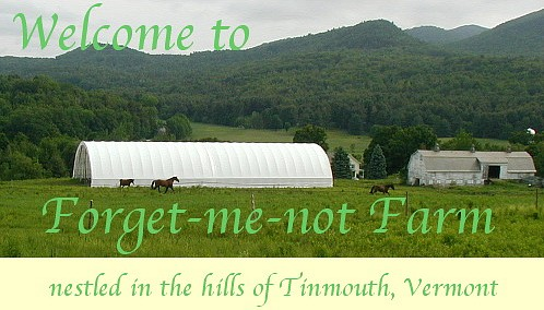 Welcome to Forget-Me-Not Farm; Nestled in the hills of Tinmouth, Vermont